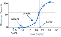 How to Derive Derived No-Effect Level (DNEL)