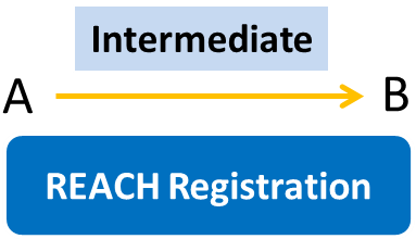 Comparison of Intermediate Registration Requirements in EU, USA, China, Japan and Korea